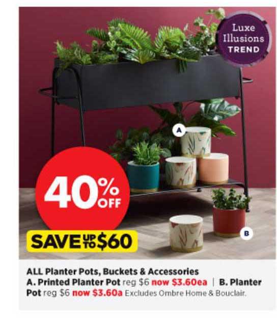 Spotlight All Planter Pots , Buckets & Accessories