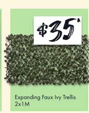 The Reject Shop Expanding Faux Ivy Trellis 2x1m