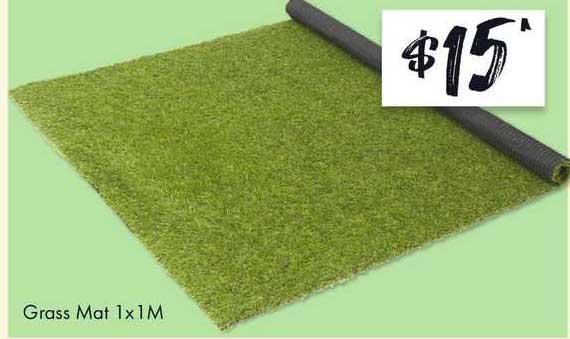 The Reject Shop Grass Mat 1x1 M