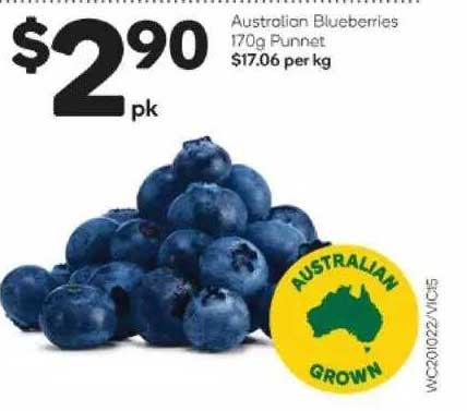 Woolworths Australian Blueberries 170g Punnet
