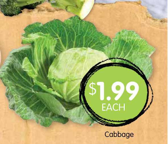 Spudshed Cabbage