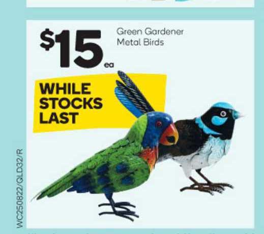 Woolworths Green Gardener Metal Birds