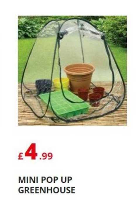 Poundstretcher Mini Pop Up Greenhouse