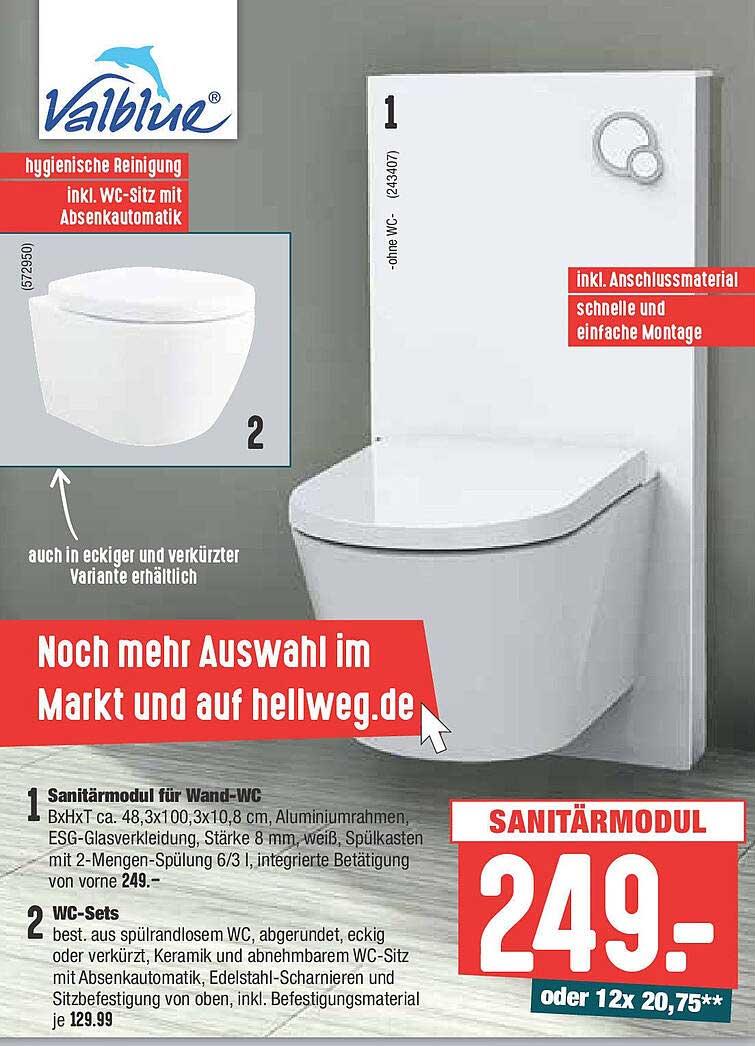 Hellweg Valblue Sanitärmodul Für Wand-wc Oder Wc-sets