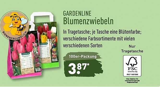 ALDI Nord Gardenline Blumenzwiebeln