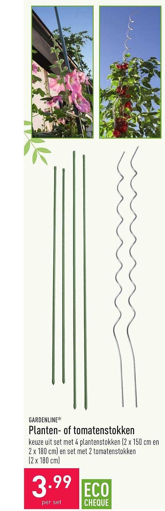 ALDI Gardenline Planten- Of Tomatenstokken