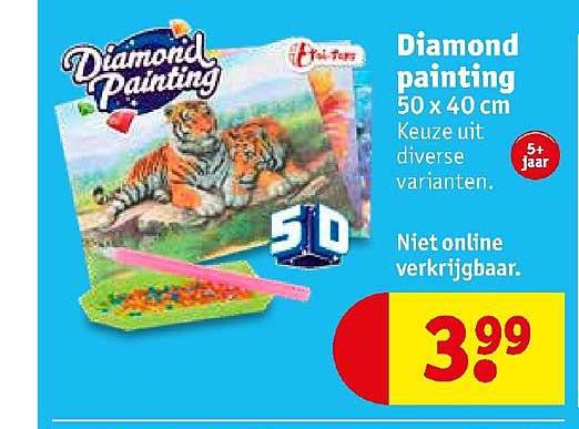 Kruidvat Diamond Painting 50x40 Cm