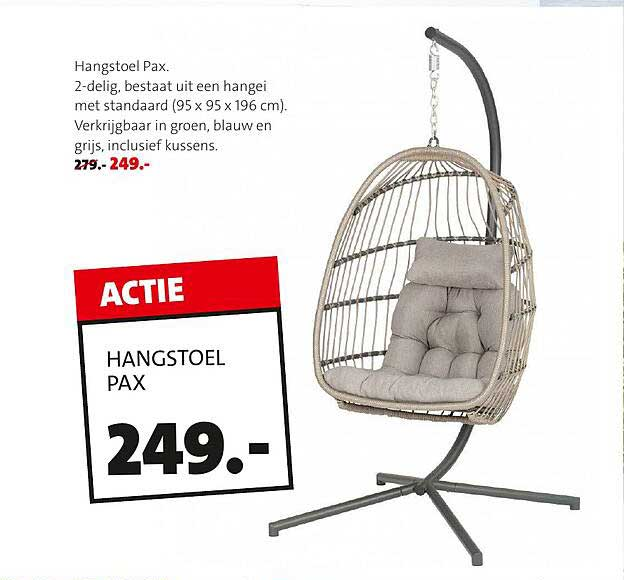Intratuin Hangstoel Pax