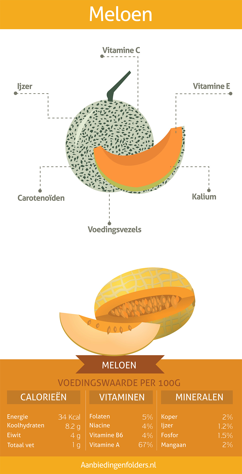 meloen infographic