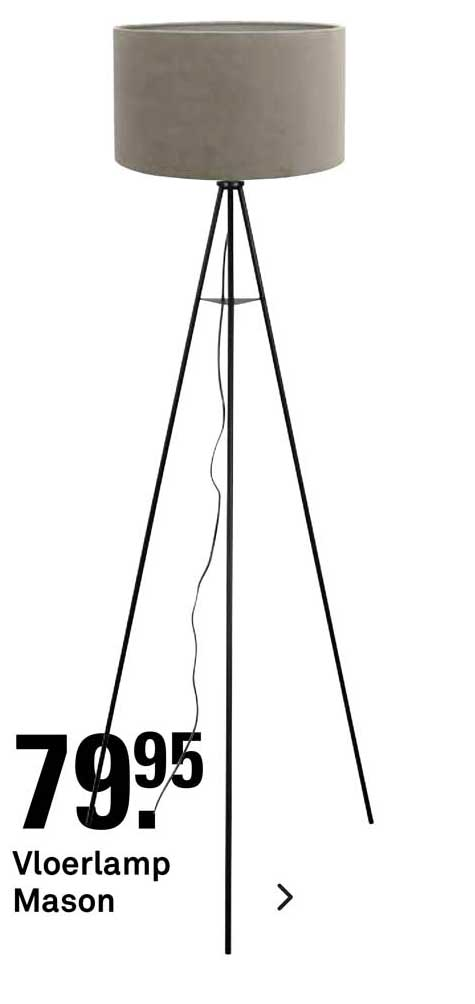 Karwei Vloerlamp Mason
