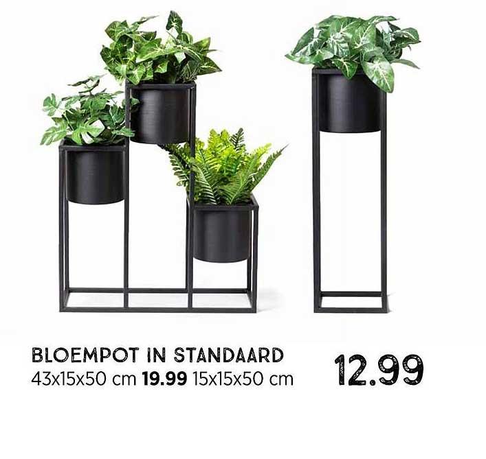 Xenos Bloempot In Standaard 43x15x50 Cm Of 15x15x50 Cm