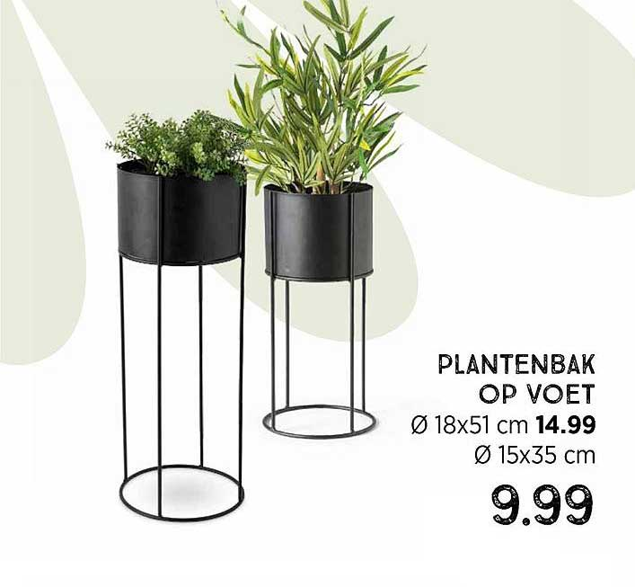 Xenos Plantenbak Op Voet Ø 18x51 Cm Of Ø 15x35 Cm
