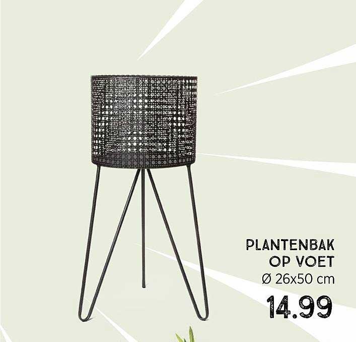 Xenos Plantenbak Op Voet Ø 26x50 Cm