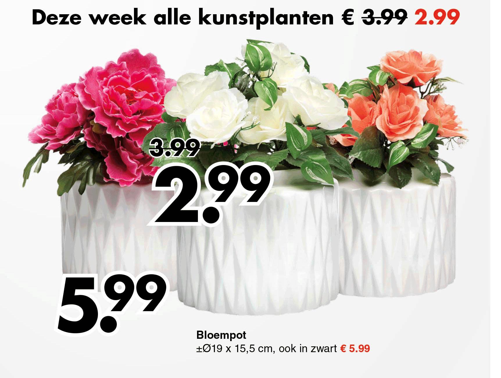 Wibra Deze Week Alle Kunstplanten: €2,99