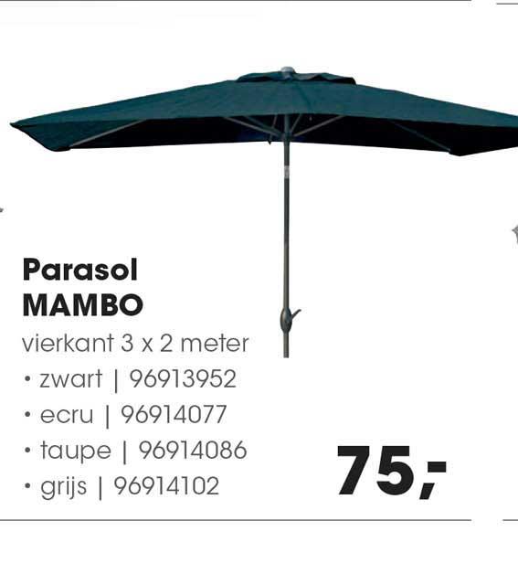 HANOS Parasol Mambo 3 X 2 Meter