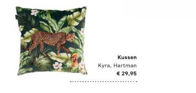 FonQ Kussen Kyra, Hartman