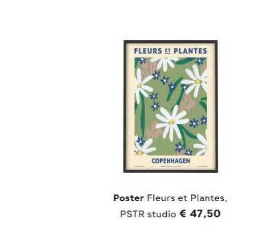 FonQ Poster Fleurs Et Plantes, PSTR Studio