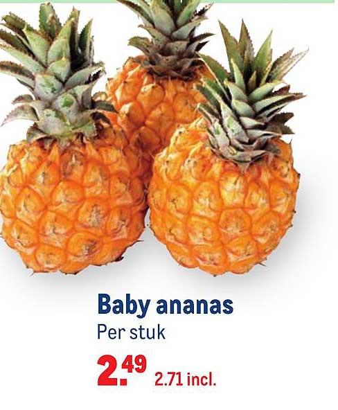Makro Baby Ananas