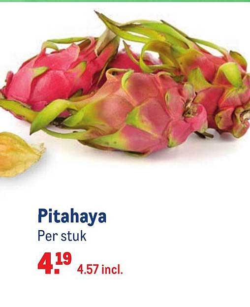 Makro Pitahaya