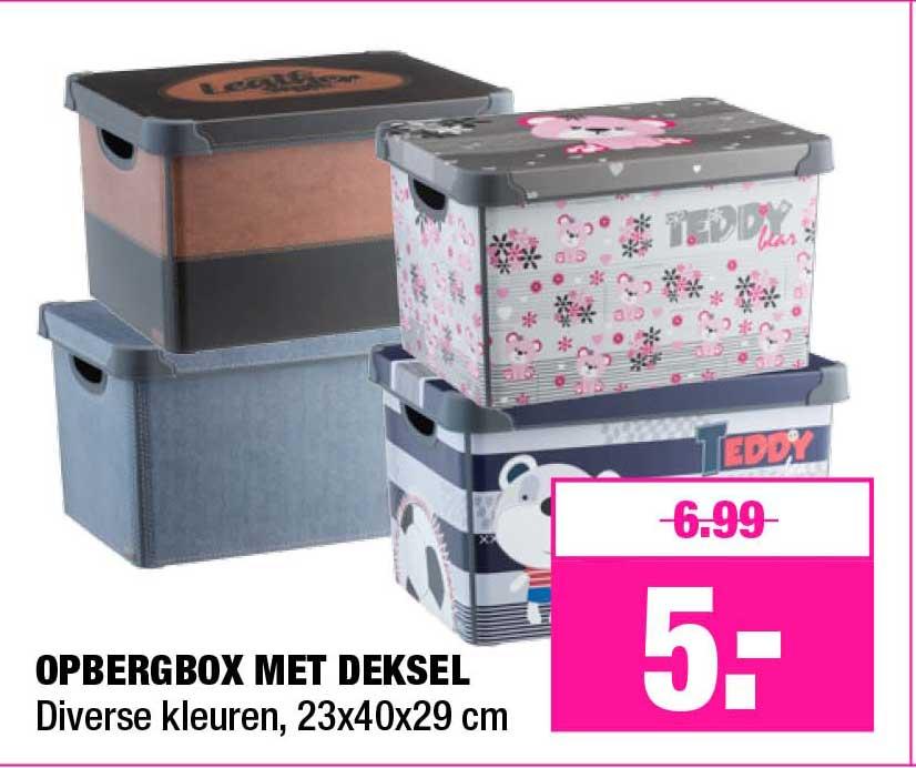 Big Bazar Opbergbox Met Deksel