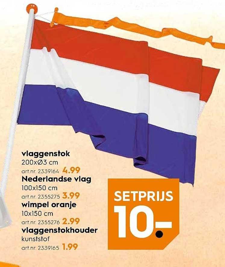 Blokker Vlaggenstok, Nederlandse Vlag, Wimpel Oranje En Vlaggenstokhouder: Setprijs €10,-
