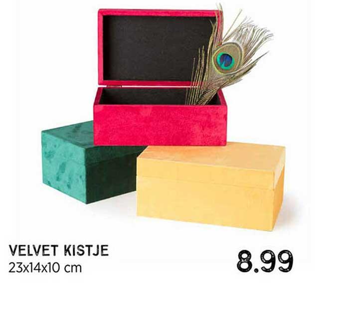 Xenos Velvet Kistje
