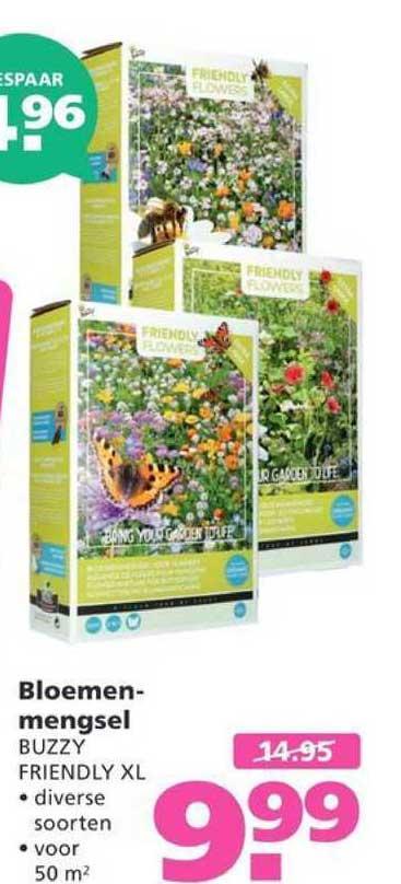 Ranzijn Tuin & Dier Bloemenmengsel Buzzy Friendly XL