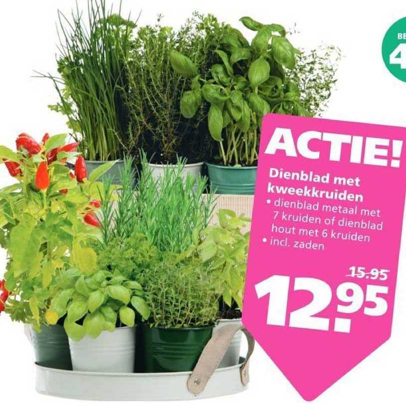 Ranzijn Tuin & Dier Dienblad Met Kweekkruiden