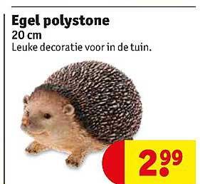 Kruidvat Egel Polystone 20 Cm