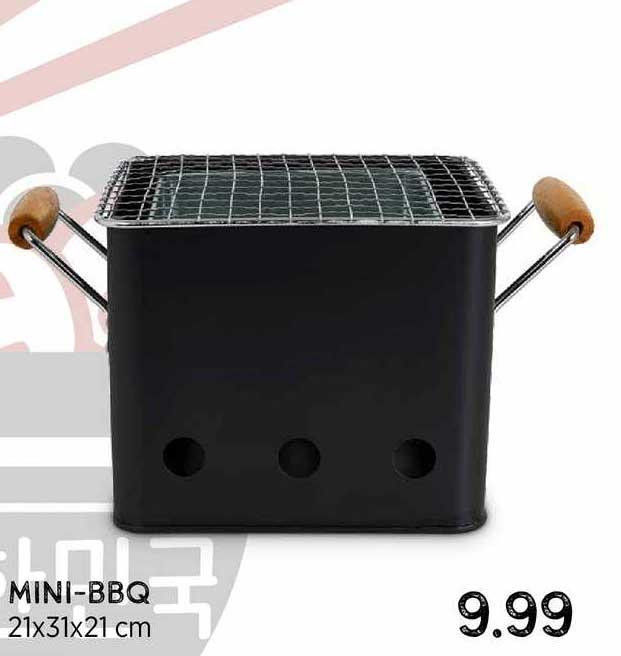 Xenos Mini-BBQ 21x31x21 Cm