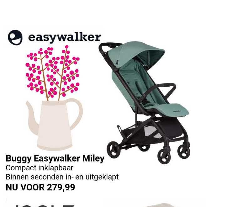 Van Asten Buggy Easywalker Miley