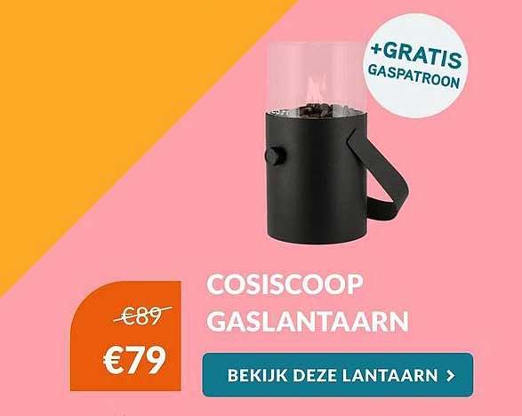 Van Der Garde Tuinmeubelen Cosiscoop Gaslantaarn