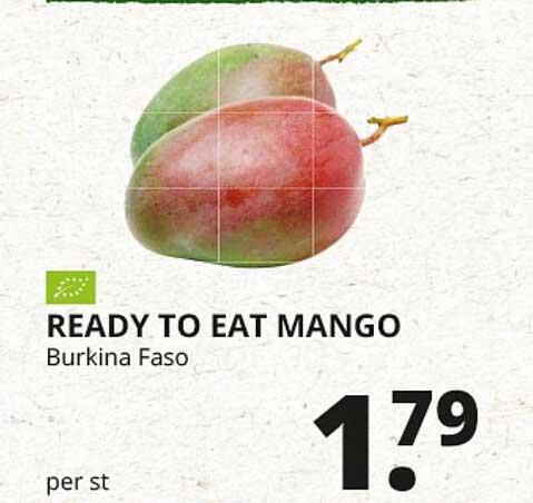 Natuurwinkel Ready To Eat Mango Burkina Faso