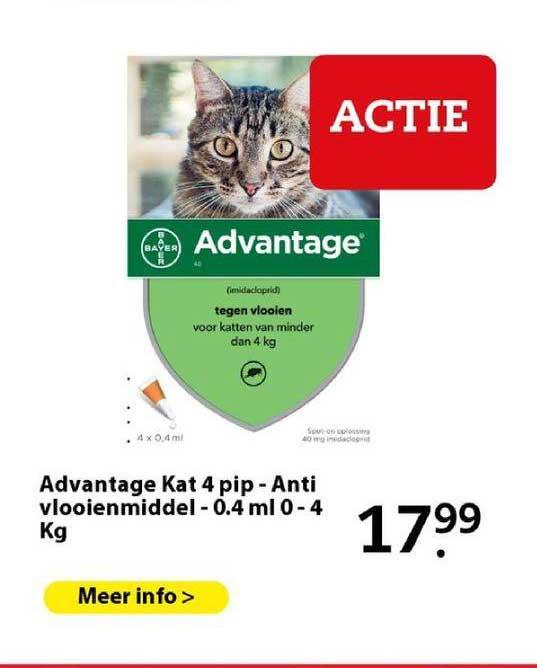 Boerenbond Advantage Kat 4 Pip - Anti Vlooienmiddel - 0.4 Ml 0 - 4 Kg