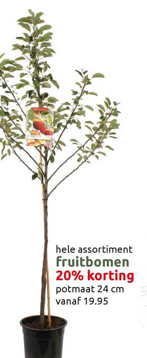 DekaTuin Fruitbomen 20% Korting