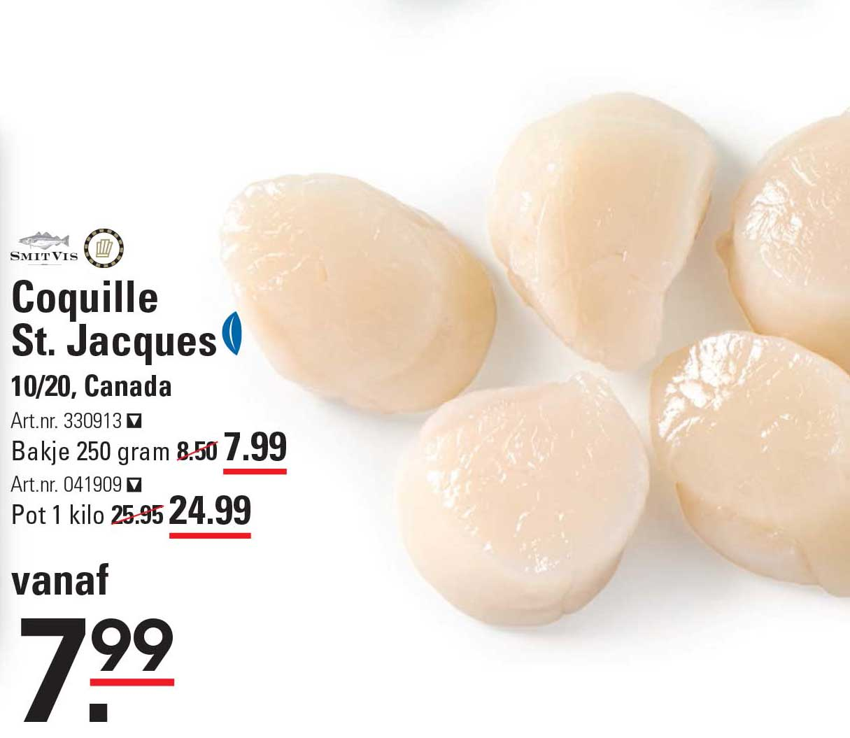 Sligro Coquille St. Jacques