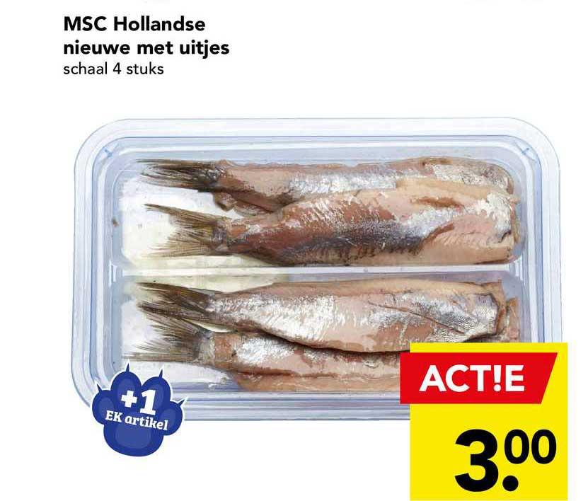 DEEN MSC Hollandse Nieuwe Met Uitjes