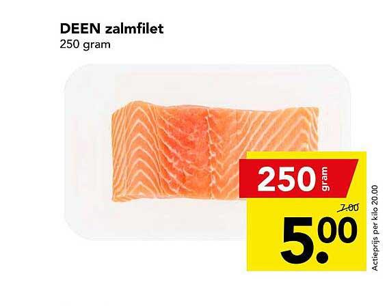 DEEN Deen Zalmfilet