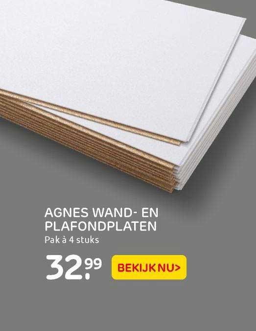 Praxis Agnes Wand- En Plafondplaten