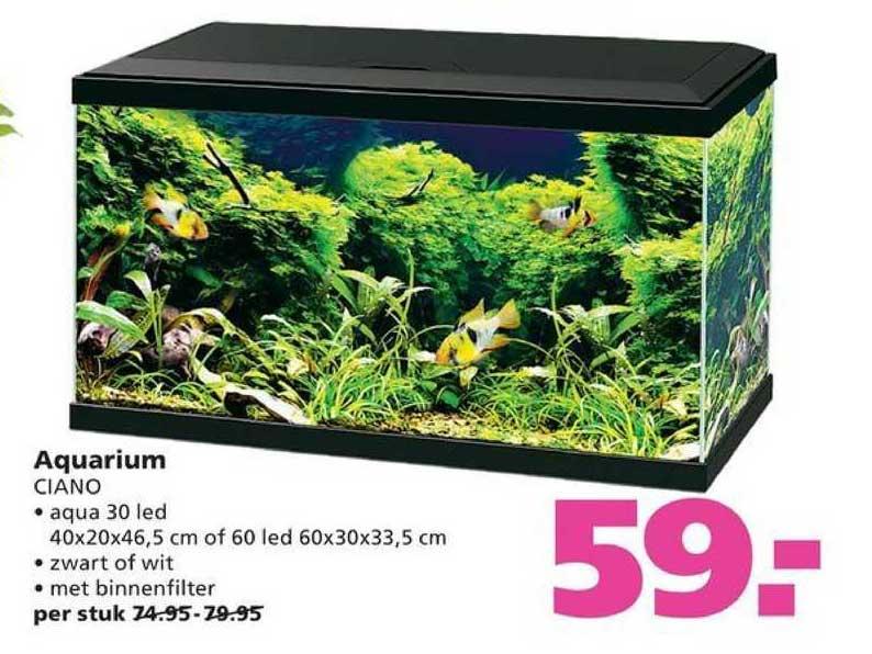 Ranzijn Tuin & Dier Aquarium Ciano