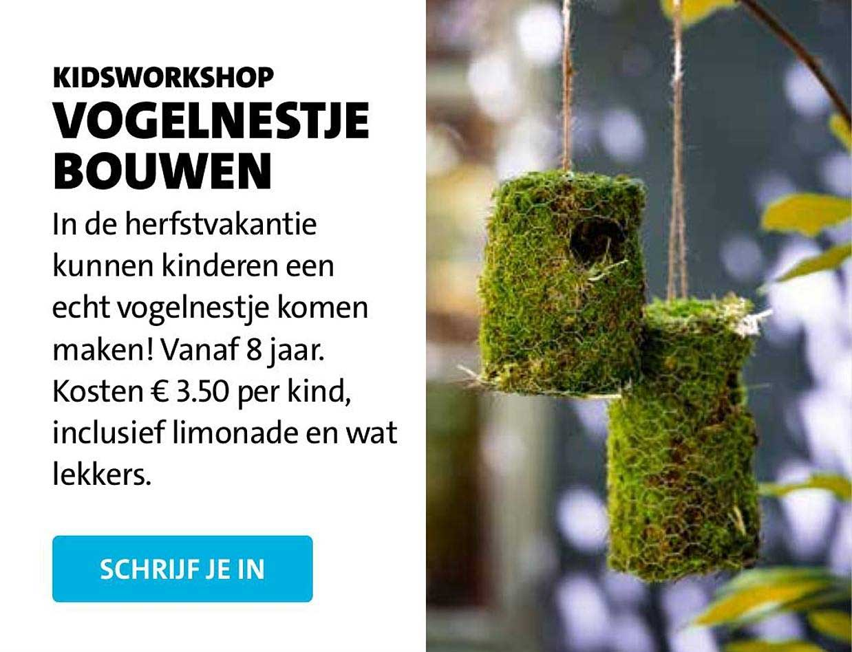 Intratuin Kidsworkshop Vogelnestje Bouwen