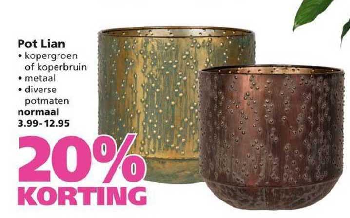 Ranzijn Tuin & Dier Pot Lian 20% Korting