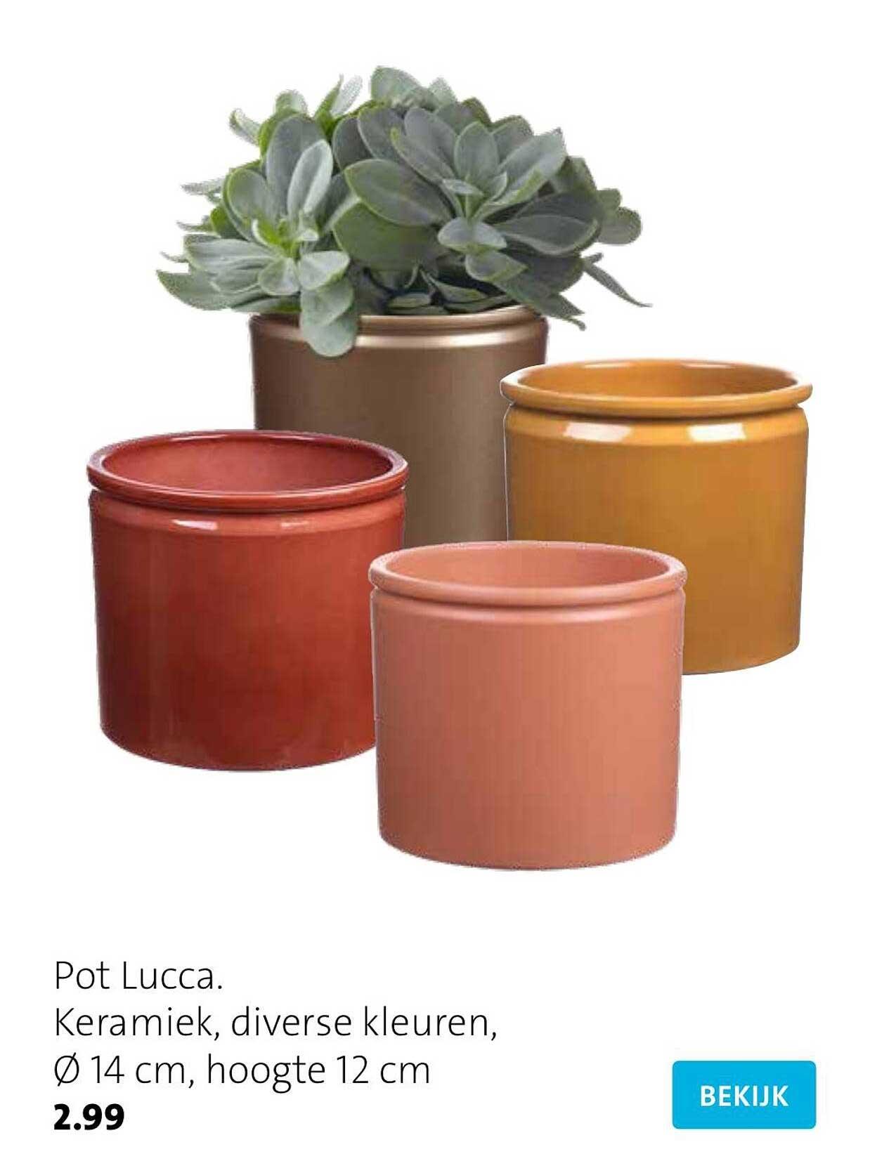 Intratuin Pot Lucca Keramiek