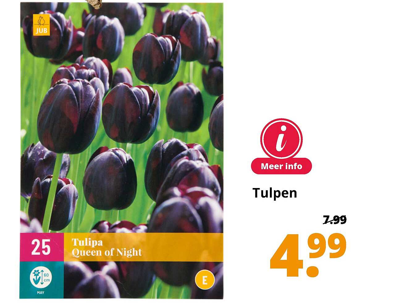 GroenRijk Tulpen