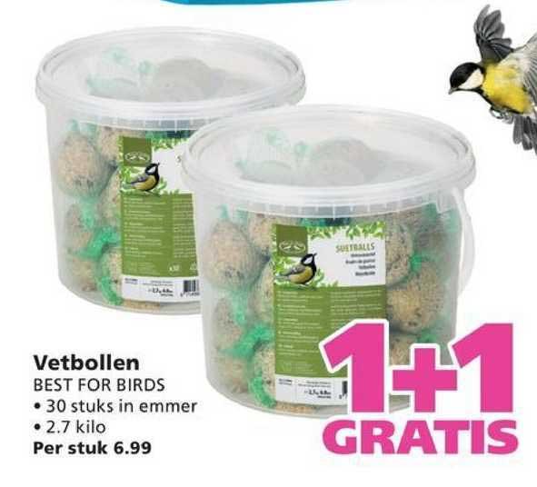 Ranzijn Tuin & Dier Vetbollen Best For Birds 1+1 Gratis