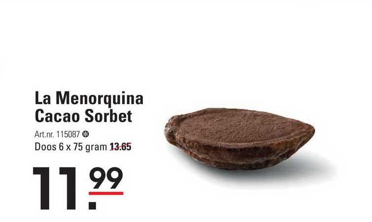 Sligro La Menorquina Cacao Sorbet