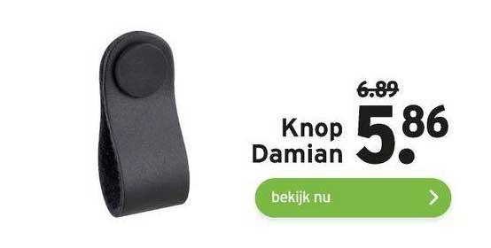 Gamma Knop Damian