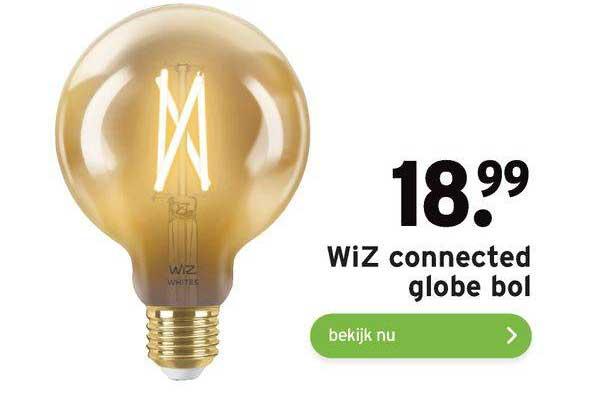 Gamma WiZ Connected Globe Bol