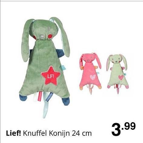 Baby & Tiener Lief! Knuffel Konijn 24 Cm