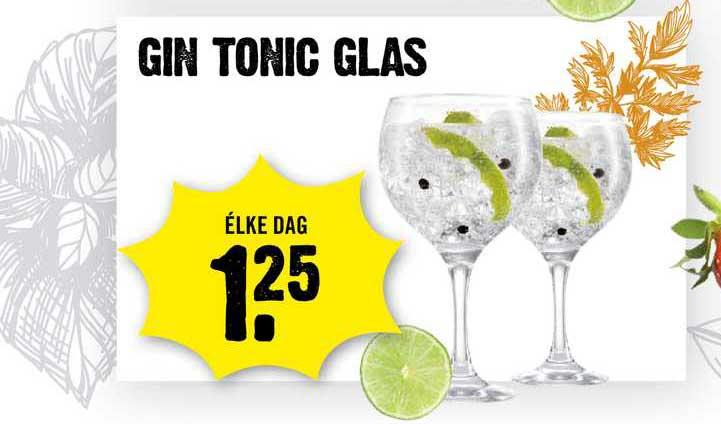 Dirck III Gin Tonic Glas
